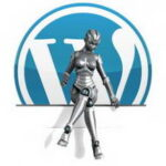 Как можно установить необходимый плагин на wordpress?
